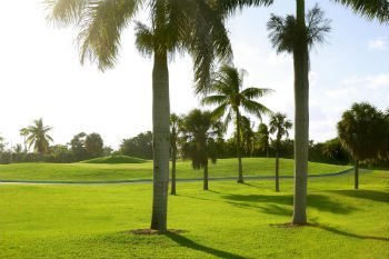 Golfing in Southeast Florida